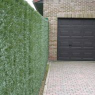 Hedge artificial fencing 2x3m
