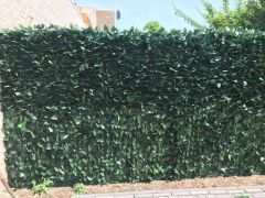 Artificial hedge Hedera