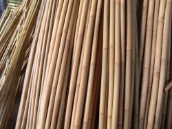 Bamboo stakes 250cm (100pcs)