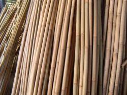 Bamboo stakes ø20/22mm 305cm (25pcs)