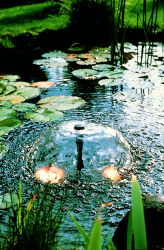 Pompe fontaine 900L