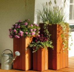 Jardiniere bois dur carré 50x20x20cm