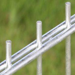 Afsluitingen hekwerken dubbelstaafmatten 123x251cm vuurverzinkt