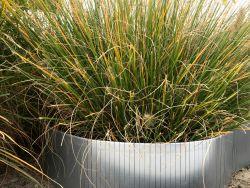 Borduras jardin acero galvanizado 240x15cm