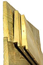 Douglas fir tongue and groove 400cm (10/24x195mm)